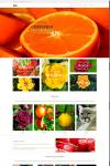Сайт товаров для ЛЮБОЙ продукции